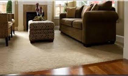 Hardwood Floor Installation Carpet